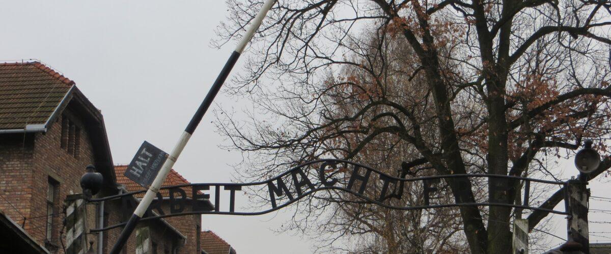 Lekcja muzealna w Auschwitz – Birkenau i w Wadowicach