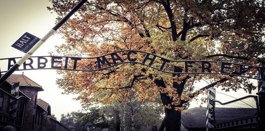 Klasy 8 w Auschwitz - Birkenau