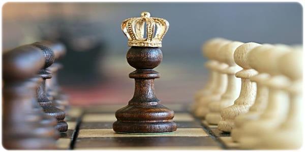 Podsumowanie roku szachowego SP24