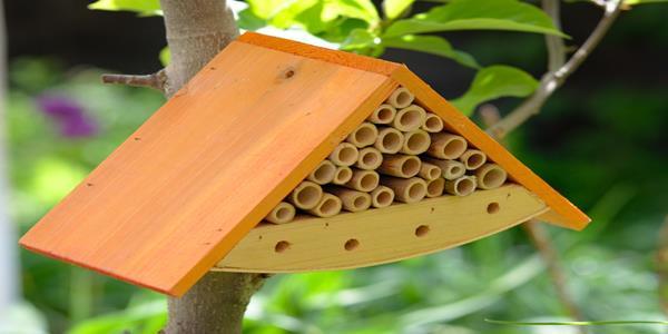 """,,Budujemy domki dla owadów"""" w 1A"""